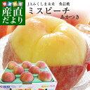 お一人様3箱まで 送料無料 福島県より産地直送 JAふくしま未来 秀品桃 ミスピー