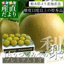 送料無料 栃木県より産地直送 JAうつのみやの梨 糖度13度以上の特秀 プレミアム13 幸水梨または、豊水梨 約5キロ