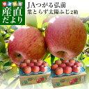 送料無料 青森県より産地直送 JAつがる弘前 葉とらず太陽ふじりんご 糖度13度以上 約3