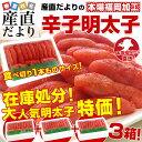 送料無料 福岡加工 辛子明太子 人気の食べ切り1本もの 山盛3箱セット(16から18本