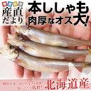 送料無料 北海道産 本ししゃも 肉厚なオス 30尾 約750...