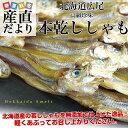 北海道から直送 北海道・広尾産 本乾ししゃも 25から30本前後 柳葉魚 シシャモ