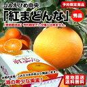 送料無料 愛媛県より産地直送 JAえひめ中央 紅まどんな 秀品 3LからLサイズ 約3キロ化粧箱(10玉から15玉)オレンジ おれんじ
