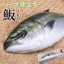 ハーブ仕立て ハマチ ラウンド 約3kg×1本 宅配便 送料無料/出世魚 出世祝い 就職祝い 歓迎会...