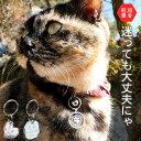 【1000円ポッキリ】超軽量 迷子札 アクリル製 小型犬猫用...