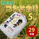 平成29年産 徳島県産 農家自慢のお米 コシヒカリ 5kg(...
