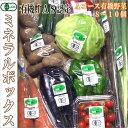 ミネラルボックスA(有機野菜詰合)