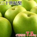 二十世紀梨(20世紀梨)7.5kg詰(22玉前後入/2L〜3Lサイズ) 鳥取県産 赤秀(ご贈答用) 送料無料