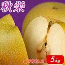 秋栄(あきばえ)5kg詰(16玉前後入) 鳥取県産 梨 赤秀(ご贈答用) 送料無料