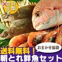 海鮮 鍋 画像