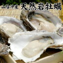 天然岩牡蠣1kgセット(5個前後入) 山陰沖産 送料無料(北海道・沖縄を除く)