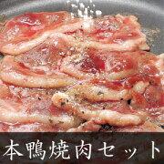 本鴨焼肉セット2人前(焼きそば付き) 送料無料(北海道・沖縄を除く)