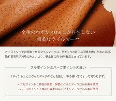 �������ȥ�å�Ĺ���ۥ饦��ɥե����ʡ����������դ�(No.9411)