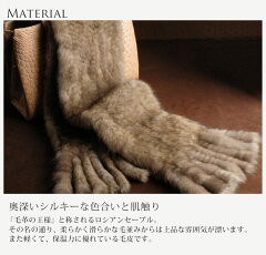 �?�����֥�ޥե顼�Ԥ߹���15cm��(No.8503)