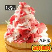 【送料無料】九州産豚こま切れ肉メガ盛り1kg+500gで1.5kg■豚小間/豚コマ/切り落とし/豚肉/国産■