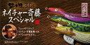 林釣漁具製作所(HAYASHI) エギ 餌木猿 ネイチャー斉藤スペシャル 3.0号 (ネイチャーナイトローズII 赤テープ)