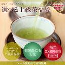 お茶 新茶 お中元ギフトにも 品種別に選べる!上級茶3