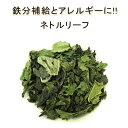 有機オーガニック素材の無農薬・無化学肥料  「ネトルリーフ」 10g♪♪【スパイスハーブ/ハーブティー】【フェアトレード】