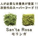 【送料無料】【完全無農薬モリンガ パウダー/粉末 100g】...