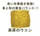 【純国産の福岡県産100%】 完全無農薬・無化学肥料 ターメリック 「高原のウコン」