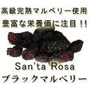 有機無農薬・無化学肥料の高級完熟ブラックマルベリー使用!!「ドライ マルベリー」 50g♪♪【ドライ