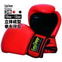 ボクシンググローブ EasyChange イージーチェンジ TTタイプ 10オンス 12オンス 10oz 12oz (ボクササイズ フィットネス パンチンググローブ 打撃 練習)