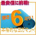 【専用メッシュケースをプレゼント!】厚さ6mmヨガマット クッション性抜群!! (ヨガマット6mm yogamat トレーニングマット)