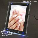 LEDライトパネル LED LIGHT PANEL(A2サイズ)青色LED搭載 省電力 エコ 看板 メニュー ウェルカムボード おしゃれ(送料無料)