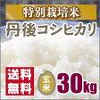 【特別栽培米】京都丹後コシヒカリ玄米30kg(27年産)