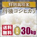 【特別栽培米】新米 京都丹後コシヒカリ玄米30kg(28年産)