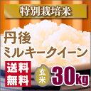 【特別栽培米】新米 京都丹後ミルキークイーン玄米30kg(28年産新米)