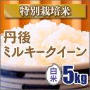 【特別栽培米】新米 京都丹後ミルキークイーン白米5kg(28年産)