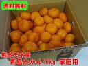 【送料無料】 熊本天水産 青島みかん10kg 家庭用 訳あり 天水みかん