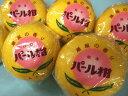 【送料無料】熊本名産 パール柑 16~20玉入(約10kg)パールかん【0315-送料無料】