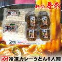 【EG】冷凍カレーうどん・6人前