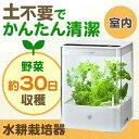 【送料無料】グリーンファーム CUBE UH-CB01G1(水耕栽培器・LED照明) [UH-CB01G1W]【ユーイング】