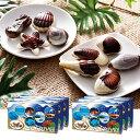 [送料無料] モルディブお土産 | モルディブ シーシェルチョコレート ドルフィン紙袋付