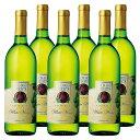 [送料無料]アメリカお土産 | オーチャードハイツ 白ワイン 6本セット【R62508】10P06Aug16