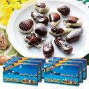 [送料無料] タヒチお土産   タヒチ シーシェルチョコレート ドルフィン紙袋付き 6箱セ