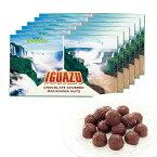 [送料無料] ブラジル・アルゼンチンお土産 | イグアスの滝 マカデミアナッツチョコレート 6箱セット【172137】