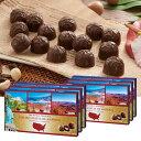 [送料無料] アメリカお土産 | アメリカ世界遺産チョコレート 6箱セット【162502】