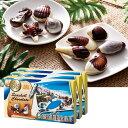メキシコ・カリブお土産 | カリビアンシーシェルチョコレート 3箱セット