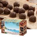 ニューカレドニアお土産 | ニューカレドニア マカデミアナッツチョコレート 3箱セット
