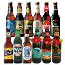 [送料無料]世界のビール飲み比べ12本セット【R06093】10P03Dec16
