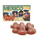 [5000円以上で送料無料] メキシコお土産   メキシコ カクタス チョコレート【172097】