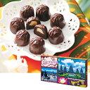 インドネシアお土産 | ジャカルタ マカデミアナッツチョコレート 【156501】【あす楽】[10P