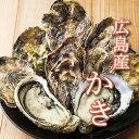 自然の恵みがいっぱいの広島産冷凍かき800g【加熱調理用】