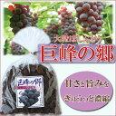 ●【巨峰の郷】【大粒干しぶどう】【干しブドウ】 430g