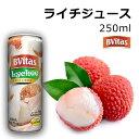 ライチジュース 250ml フルーツ 缶ジュース