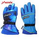 フェニックス【PHENIX】2020-21秋冬モデル Demonstraion Kid's Gloves〔デモンストレーションキッズグローブ〕(ジュニア・キッズ)手袋 グローブ PSAG8GL71